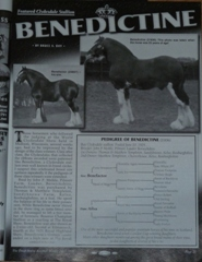 Article of Benedictine in Draft Horse Journal