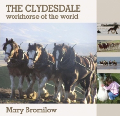 Samson is featured in the new book - The Clydesdale - the Workhorse of the World by Mary Bromilow